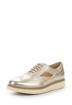 Ботинки Geox. Цвет: золотой