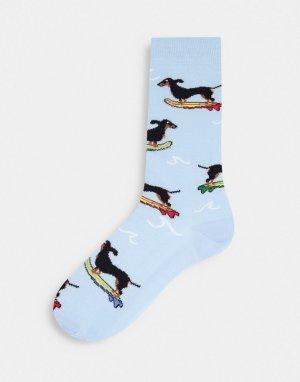 Голубые носки до щиколотки с собакой на скейтборде -Голубой ASOS DESIGN
