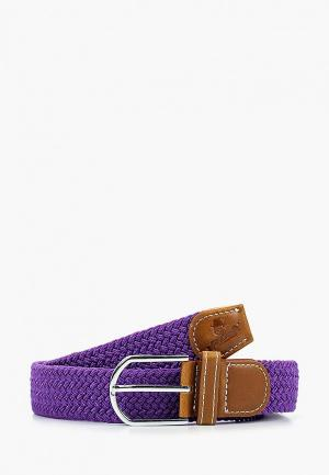 Ремень Churchill accessories. Цвет: фиолетовый