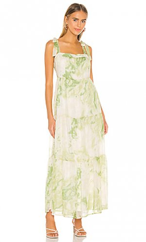 Макси платье palm Line & Dot. Цвет: зеленый