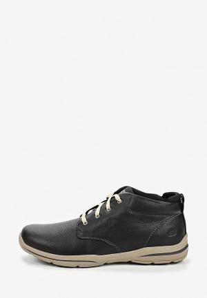 Ботинки Skechers HARPER- MELDEN. Цвет: черный