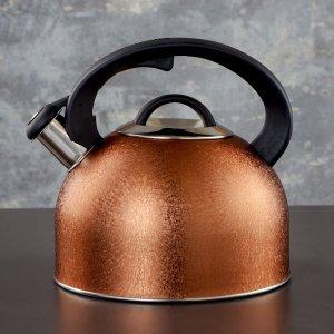 Чайник со свистком snow, 3 л, индукция, цвет золото Доляна