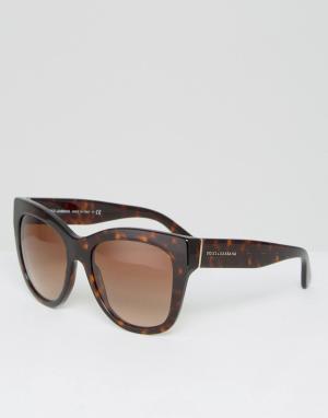 Классические солнцезащитные очки кошачий глаз в черепаховой оправе Dol Dolce & Gabbana. Цвет: коричневый