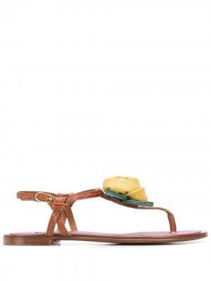 Сандалии с Т-образным ремешком Dolce & Gabbana. Цвет: коричневый