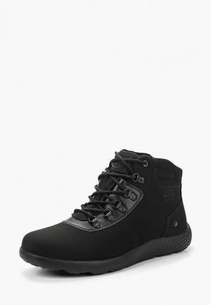 Ботинки Ascot MUNICH. Цвет: черный