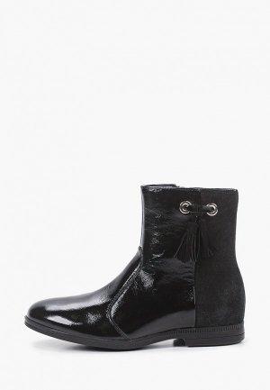 Ботинки Ralf Ringer GIANNI-D. Цвет: черный