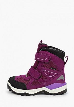 Ботинки Ecco SNOW MOUNTAIN. Цвет: фиолетовый