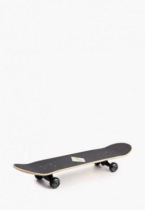 Скейтборд Termit 31. Цвет: черный