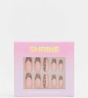 Накладные ногти X ASOS Exclusive Shrine