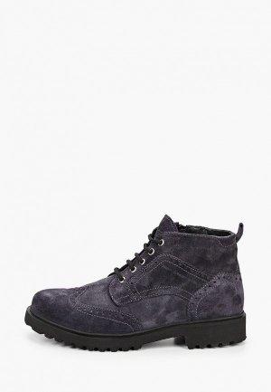 Ботинки HCS. Цвет: фиолетовый