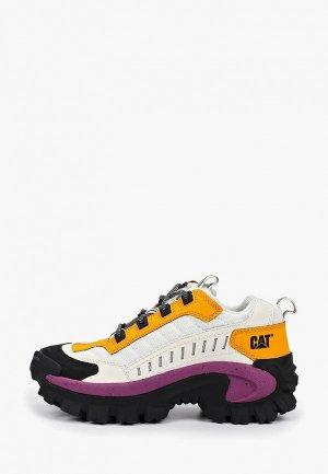 Ботинки трекинговые Caterpillar INTRUDER. Цвет: белый