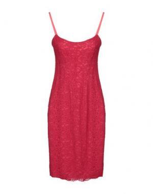 Платье до колена GIO' GUERRERI. Цвет: пурпурный