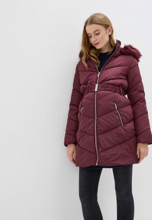 Куртка утепленная Dorothy Perkins Maternity. Цвет: бордовый