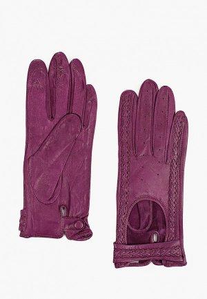 Перчатки Lantana. Цвет: фиолетовый