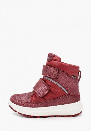 Ботинки Ecco SOLICE K. Цвет: бордовый