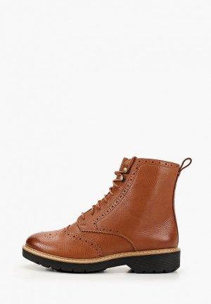 Ботинки Clarks Witcombe Flo. Цвет: коричневый