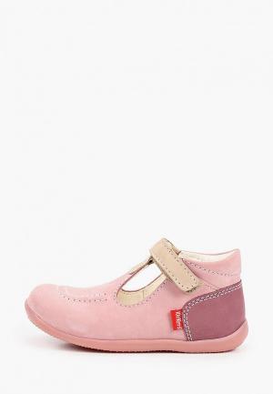 Ботинки Kickers BONBEKRO. Цвет: розовый