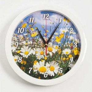 Часы настенные, серия: природа, Соломон