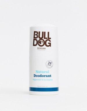 Дезодорант с перечной мятой и эвкалиптом Bulldog