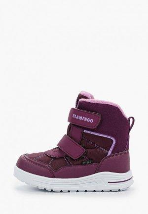 Ботинки Flamingo. Цвет: фиолетовый
