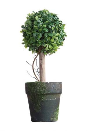 Интерьерный декор Creative. Цвет: зеленый