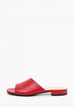 Сабо Argo. Цвет: красный