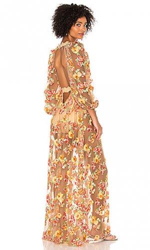 Макси платье winnie For Love & Lemons. Цвет: peach