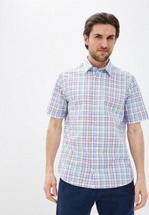 Рубашка Henderson SHS-0562. Цвет: разноцветный