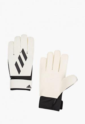 Перчатки вратарские adidas TIRO GL CLB. Цвет: белый
