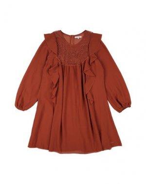 Платье CHLOÉ. Цвет: коричневый