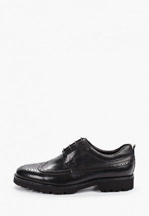 Туфли Roscote. Цвет: черный