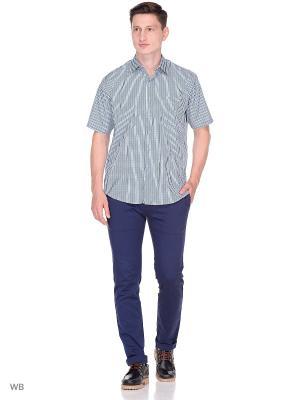 Рубашка CARAT.. Цвет: синий, зеленый
