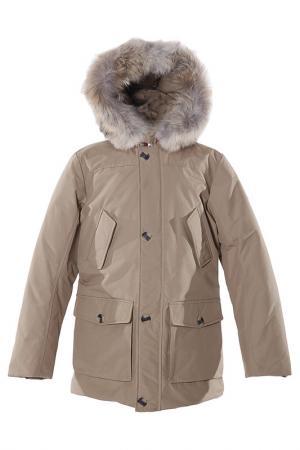 Куртка Canadiens. Цвет: коричневый