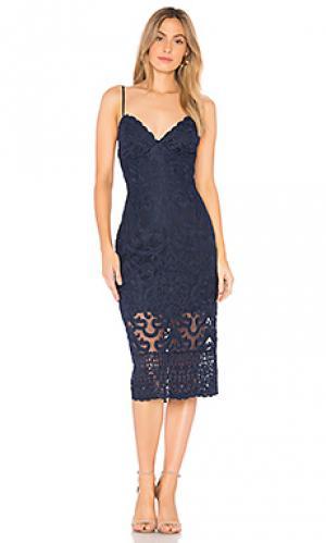 Кружевное платье gia Bardot. Цвет: синий