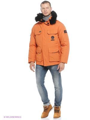 Куртка EVOLUTION. Цвет: оранжевый