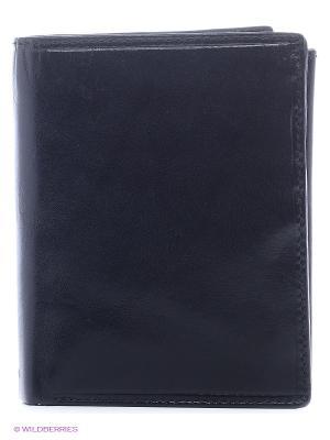 Бумажник MZ-3 Visconti. Цвет: черный