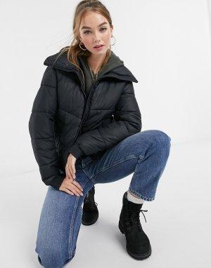 Черная дутая куртка -Черный Hollister