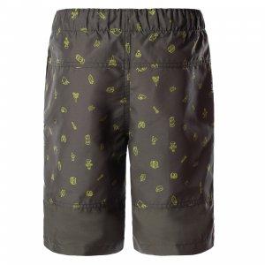 Пляжные шорты для мальчиков Class V The North Face. Цвет: зеленый