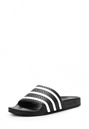 Сланцы adidas Originals ADILETTE. Цвет: черный
