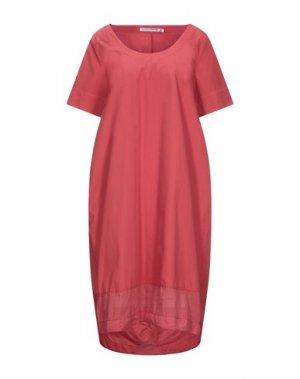 Платье до колена EUROPEAN CULTURE. Цвет: красный