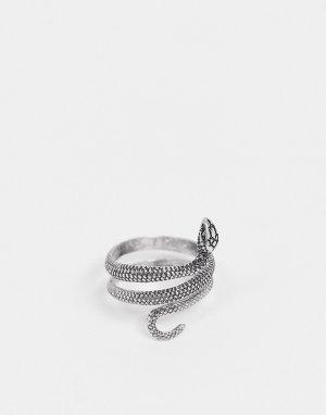 Серебряное кольцо в виде змеи -Серебристый River Island
