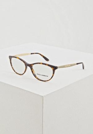 Оправа Dolce&Gabbana DG3310 502. Цвет: коричневый