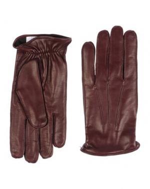 Перчатки DOLCE & GABBANA. Цвет: какао