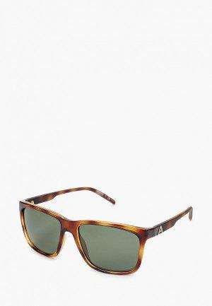 Очки солнцезащитные Arnette AN4272 27049A. Цвет: коричневый