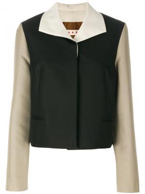 Пиджак дизайна колор-блок Marni. Цвет: чёрный