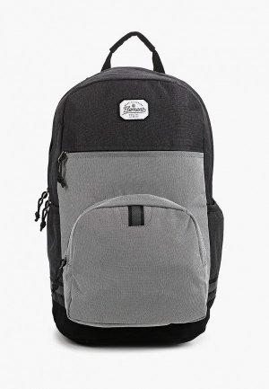 Рюкзак Element REGENT BPK. Цвет: серый