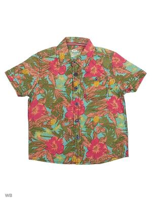 Рубашка E-bound. Цвет: светло-зеленый, малиновый, рыжий