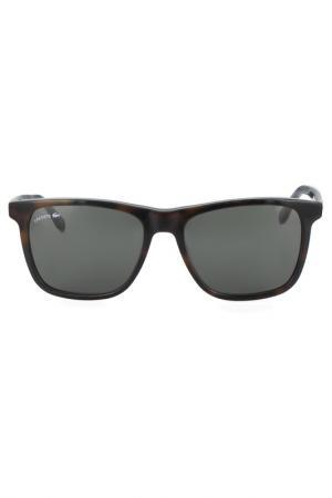Очки солнцезащитные Lacoste. Цвет: коричневый