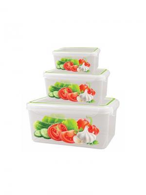 Набор контейнеров для холодильника и микроволновой печи super lock с декором 0.5л+1.1л+1,6л Бытпласт.. Цвет: прозрачный