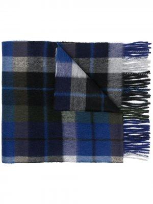 Клетчатый шарф Begg & Co. Цвет: синий